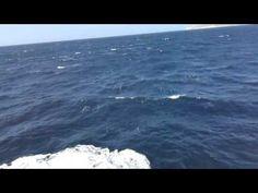 From Malta toward Gozo by ferry