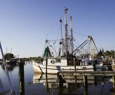 Apalachicola. Interested in vacationing in the area?  Click here for accommodations: http://collinsvacationrentals.com/
