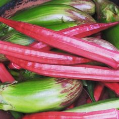 When it comes to heirlooms from India this Red Bhindi or Ladyfinger is one of our favorites. Grows great in hot weather and can be eaten raw too. #redokra #organic #openpollinated #seeds from #theseedstore