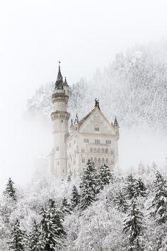 neuschwanstein in snow - neuschwanstein castle covered with snow