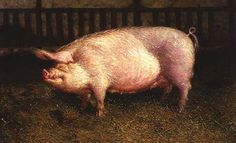 Life size portrait of a pig named Den-Den by Jamie Wyeth. The painting is AMAZING. It's at the Brandywine River Museum.
