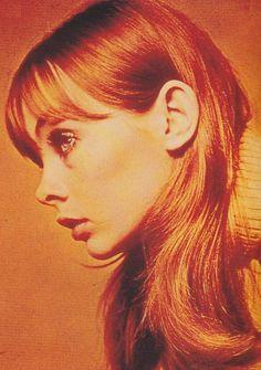 Jean Shrimpton's perfect profile.