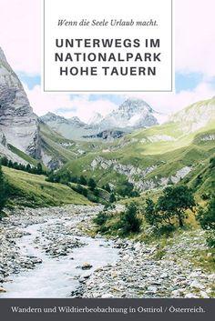 Folgt mir auf einige Wanderungen und Wildtierbeobachtungen im Nationalpark Hohe Tauern in Osttirol - einem Ort, wo Geist und Körper zur Ruhe kommen. (Wandern in Österreich)