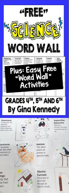 """Never Underestimate the Power of Science Vocabulary!  """"Freebie"""" Word Wall and Easy Ideas to Use Vocabulary in your Science Classroom!"""