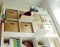 IKEA Expedit Kallax Möbel zum Klettern für Katzen Hack Catwalk