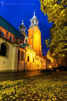 Gniezno CathedralGniezno - the heart of Poland 1000 years ago…Gniezno, Greater Poland, Polandsaduraphotography.com