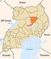 Marburg Virus Reported In Western Uganda Christian Girls, Any Job, 16 Year Old, Public Health, Guide Book, Uganda, Geography, Transportation, Success