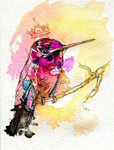 Hummingbirds! by Abby Diamond, via Behance