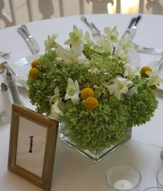 They had similar flowers as well in their centerpieces with the local hydrangea, billy balls and white dendrobium orchids.