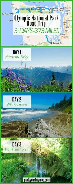 Olympic National Park Road Trip | Washington travel | lavender farms | Hurricane Ridge | Marymere Falls | Lake Crescent | Sol Duc Falls | Forks, WA | La Push Beach | Quileute Oceanside Resort | Hoh Rain Forest | Ruby Beach | Quinalt Rain Forest
