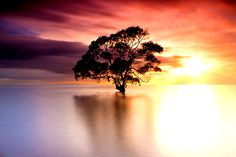 See the sunrise on Nudgee Beach, Australia