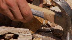 Grant's Getaways - Fossil Digging