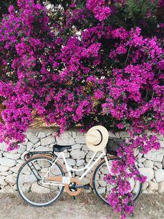 Maintaining Your Bicycle Chain Bike Planter, Bike Photography, Home Vegetable Garden, Bike Style, Bike Art, Something Beautiful, Beautiful Life, Floral Arrangements, Beautiful Flowers
