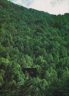 pezo von ellrichshausen black in forest - Google Search