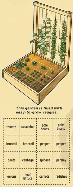 """A very nice compact vegetable garden design. Be sure you get non-hybrid, """"no-HMO"""" seeds so you can save $$ by recovering the seeds for re-planting! Hybrid and HMO seeds will not give you seeds that reproduce.. they are a waste of $. ++Consider setting this garden up with SOUTHERN EXPOSURE and in full daylight from 10 am to 3-4 pm, if possible. Also, if you can, set it near a downspout so you can capture rain water in a barrel for irrigation."""