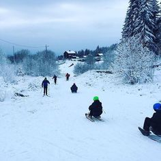 Photo: @katieduck0308 Oslo's most popular toboggan run starts at Frognerseteren and ends at Midtstuen metro station. At the end of a run you can catch the metro back up to Frognerseteren for another run. Korktrekkeren is 2000 metres long and the elevation drop is 255 metres. One non-stop ride takes 8-10 minutes. The metro from Midtstuen to Frognerseteren takes 13 minutes. Riding in Korketrekkeren is free but sled rental costs NOK 80-100 per day. #oslo #visitoslo by visitoslo