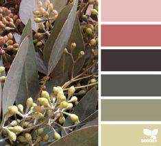 eucalyptus hues spring color palette for soapy projects Hue Color, Colour Pallette, Color Palate, Colour Schemes, Color Combos, Color Patterns, Pantone, L Eucalyptus, Color Harmony