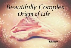 Http://intimacyspecialist.blogspot.com