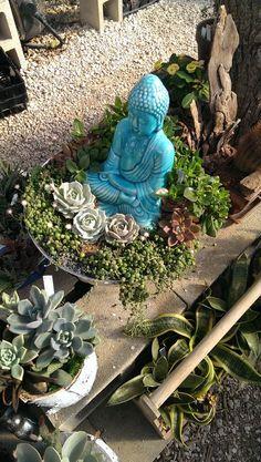 East Austin Succulents - Austin, TX, United States. Buddha arrangement.