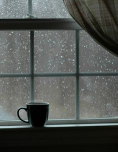 audiewaskom:  This looks really good right now, it's been raining, so maybe tomorrow.