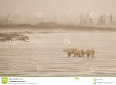Arctic haze - Google Search