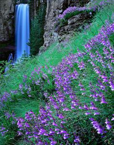 Tumalo Falls, Oregon -