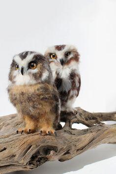 I Create Lifelike Needle-Felted Animal Sculptures I specialize in creating lifelike animals through Needle felting. Felt Owls, Felt Birds, Felt Animals, Needle Felted Owl, 3d Figures, Needle Felting Tutorials, Animal Sculptures, Wet Felting, Felt Art