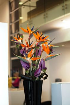 The flowers for one of our corporate clients, using strelitzia, allium and anthurium. #reidsflorists #corporateflowers #tropicalflowers