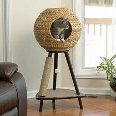Katzenmöbel Design