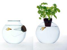 Fish Bowls Galore » Yanko Design
