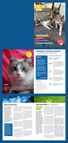 Livret destiné à être déposé principalement chez des vétérinaires partenaires http://www.ecole-du-chat-bordeaux.com/