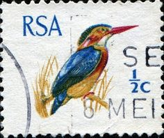 South Africa stamp 1969 Stamp Collection Value, Old Symbols, Craft Station, Rare Stamps, Stamp Printing, African Animals, African History, Kingfisher, Animal Quotes