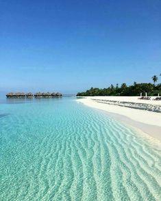 The Maldives Island -Coco Palm Dhuni kolhu Beach Honeymoon Destinations, Dream Vacations, Vacation Spots, Vacation Ideas, Exotic Beaches, Tropical Beaches, Photos Bff, Travel Photos, Coco Palm Dhuni Kolhu