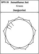 Body Part Sanjeevinis- (Healing Cards) - bps