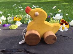 Pull along toy Duck, a joyfully looking wooden animal on wheels with a string, will accompany your child in a lovely walk in a park or even at home. Cute and not easy to break, it is also a reliable friend in different kind of plays. Just take a look how lovely the toy looks when it is obediently jumping behind its little master! Wooden Toy Duck is made from ash tree, and it is covered with colour made from renewable and fully bio-degradable natural binder raw materials. Uncoloured parts of…