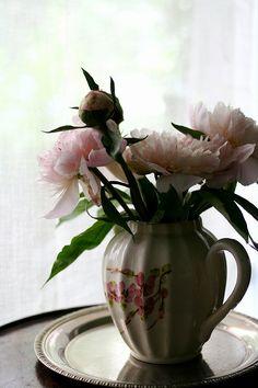 ティーポットに花を生ける