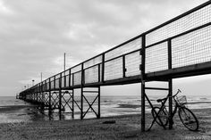 If we're still here... - to learn how to deceive... BW Jetty, Rimini, Emilia Romagna, Italy