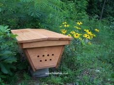 Raise bees in a top-bar hive. The top-bar hive is so much better for the bees than traditional Lanstroth hives.