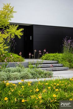 Strakke voortuin – PUUR groenprojecten Yes, a well-designed front yard adds … Back Gardens, Small Gardens, Outdoor Gardens, Contemporary Garden Design, Modern Landscape Design, Garden Steps, Vegetable Garden Design, Garden Architecture, Modern Landscaping