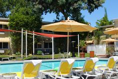 Glorious sunny days + sunny yellow lounge chairs Cupertino California, Palms Hotel, Lounge Chairs, Sunny Days, Bungalow, Patio, Island, Yellow, Outdoor Decor