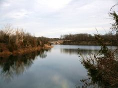 73 Acres in Audrain County, Missouri is a 73 acre farm for sale in Mexico, Missouri, 65265.