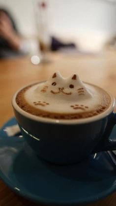 How amazing?! Cats AND coffee. Two of m favs.