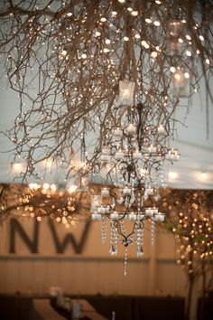 Loved the lighting at Camrose Hill Farm. It was a picture-perfect wedding venue.