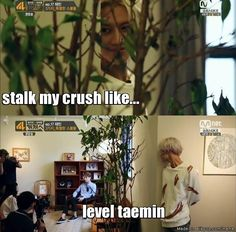 so many taekai moment lately...