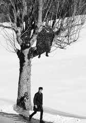 Traumwandler by Sven Bänziger - fashion photo shooting with Silvesterchläuse