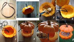 cute pumpkin birdfeeder for fall...