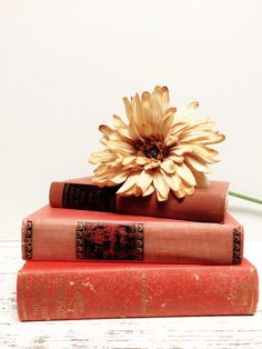 Peach and Pink Books by beachbabyblues