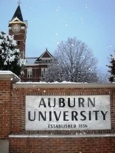 Snowy Auburn - Doesn't happen very often... but when it does, it's absolutely beautiful!!!