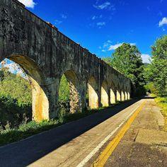 Buona giornata a tutti!!!!!! #igerspisa #igersitalia #top_italia_photo #toscana_super_pics #thehub_italia #toscana_amoremio #toscana_friends #italia_super_pics #besttoscanapics #bestitaliapics #infinity_italia #igw_italia #pisa #goandexplore #total_italy #la_landscape #loves_toscana_ #loves_united_toscana #loves_madeinitaly #vivopisa #volgopisa #volgotoscana #volgoitalia by claudio_indiani
