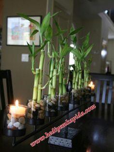 Vazoda Bambu 14 Şubat Özel Hızlı Teslimat